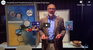 Versatile and Flexible Reactive Silicone Polymers