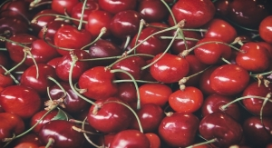 In 10 Studies, Tart Cherry Juice Concentrate Linked to Endurance Exercise Improvements