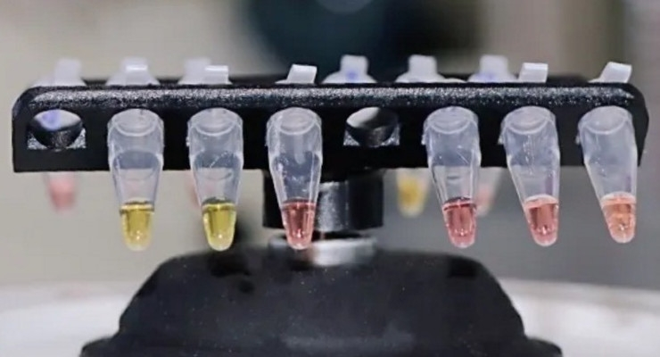 COVID-19 Rapid Testing Technology Developed by Oxford Scientists