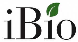 iBio Developing COVID-19 Vaccine Candidates