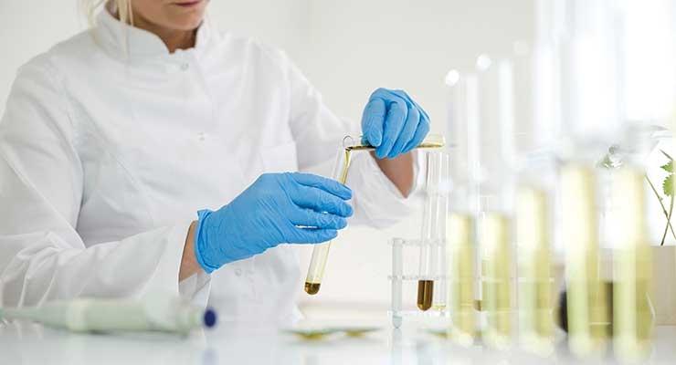 Positive Indicators: Selecting a Hemp Testing Lab