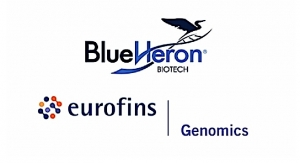 Eurofins Genomics Launches SARS-CoV-2 Plasmid DNA Controls
