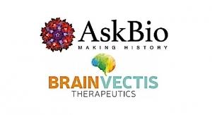 AskBio Acquires BrainVectis