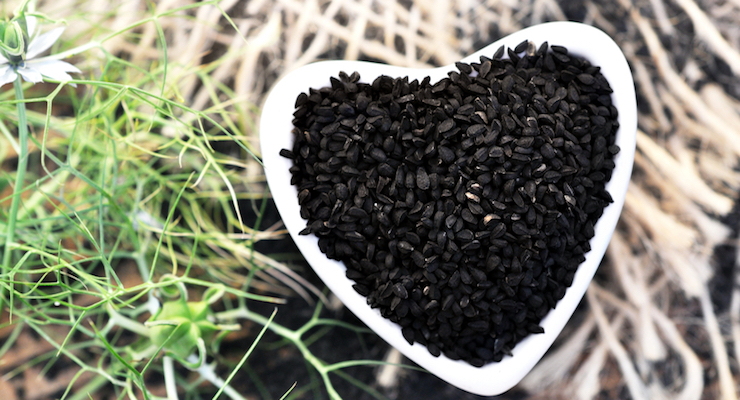 Standardized Black Seed Oil Shown to Optimize Blood Pressure and Heart Rate