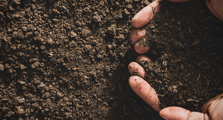 Ancient Nutrition Launches Line of Soil-Based Probiotics