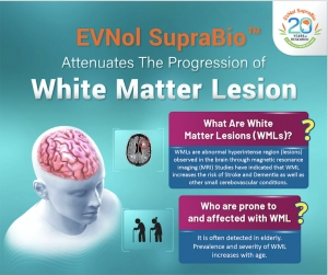 EVNol SupraBio® Attenuates The Progression of White Matter Lesions