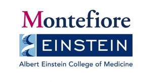 Montefiore, Einstein Test New Drug Combo to Conquer COVID-19