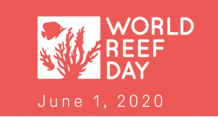 Raw Elements Marks World Reef Day