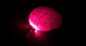 Optical Imaging Technology May Help Surgeons Better Treat Brain Diseases