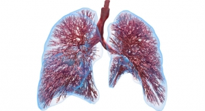 Computational Lung Model Could Significantly Reduce COVID-19-Related Deaths