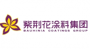 60. Bauhinia Coatings Group