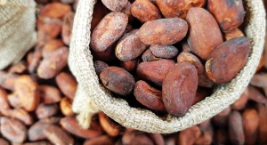 Cocoa Flavanols: Manufacturing Process & Supply Chain Make or Break Benefits