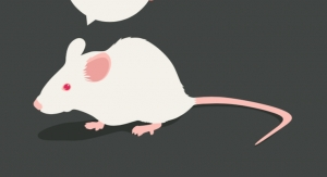 Nicotinamide Riboside Shown to Correct Social Deficits in Mouse Model of Autism