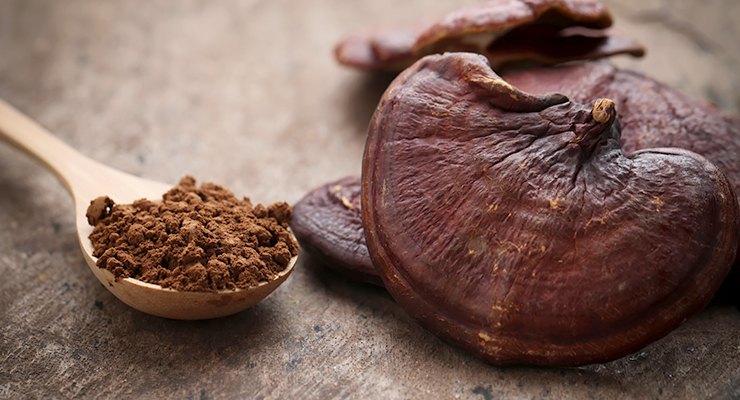 Botanical Research: Medicinal  Mushrooms, Tart Cherry for Endurance, Nigella Sativa for Diabetes