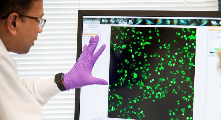 Sai Offers Enhanced Lab Capabilities