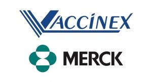 Vaccinex, Merck Collaborate on Keytruda Combo