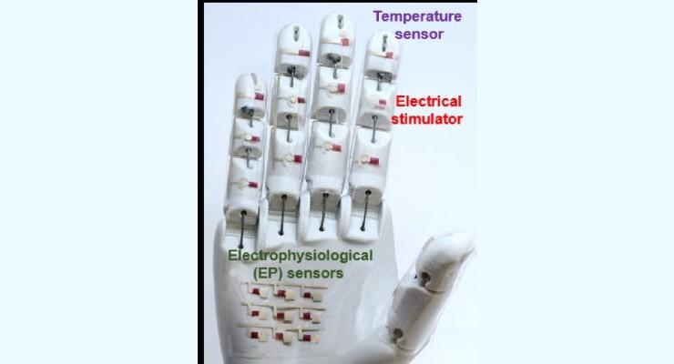 Smart E-Skin, Robotic Hand Could Gather Vital Diagnostic Data