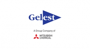 Gelest Names CEO