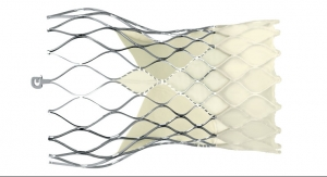 Medtronic, The Foundry to Develop Mitral Valve Repair Technology