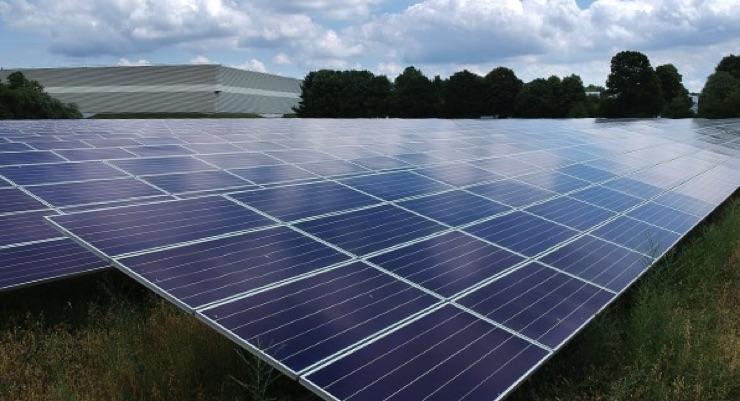 Net Zero Emissions for Estée Lauder Companies