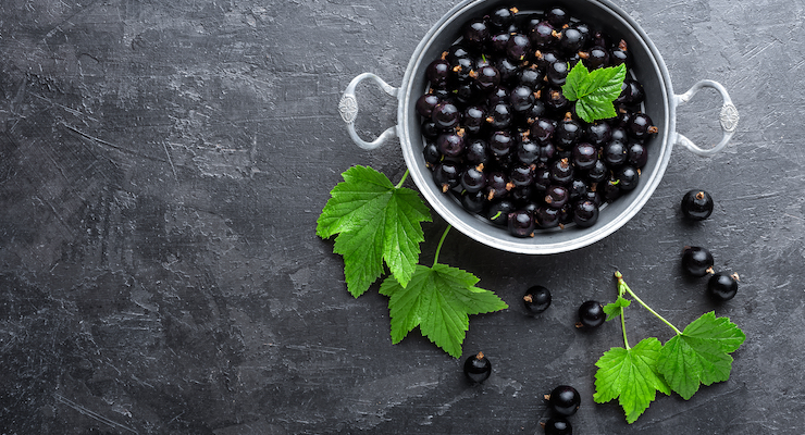 Blackcurrants Benefit Glucose Metabolism and Insulin Response, Study Finds