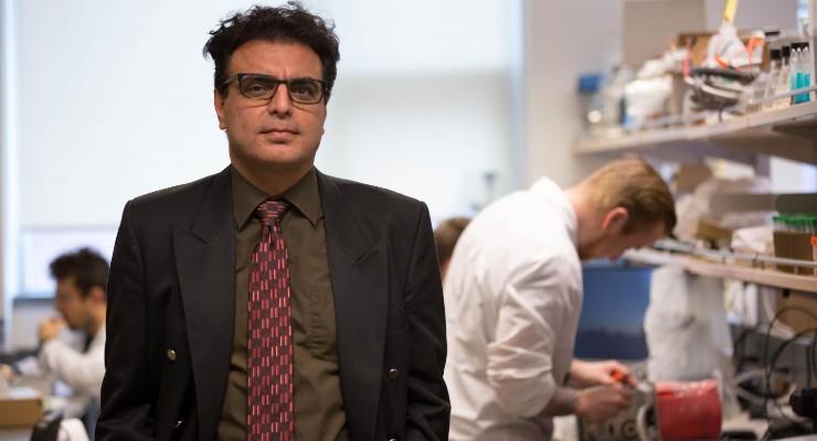 Twist on Heart Valve Design Boosts Blood Flow, Prevents Clots