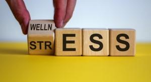 Wellness & M&A