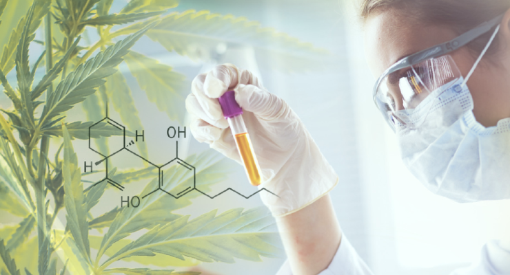 Greentech Group Partners with Phytograde