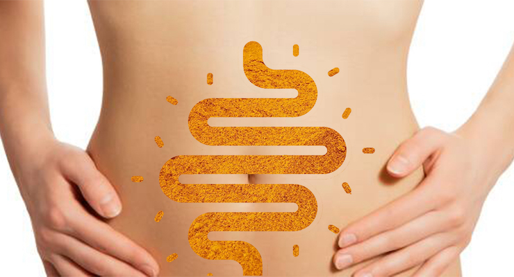 Curcuminoid Complex Study Evidences Benefits to Gut Health and Mood