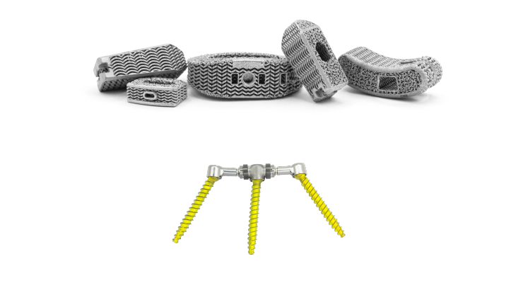 Nexus Spine Implants for Use in Spinal Surgeries Become Available