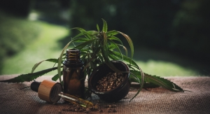 Hot CBD Personal Care Brands for 2021