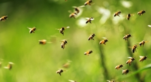Guerlain Supports Women, Bees
