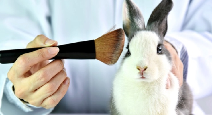 Virginia Bans Animal Testing for Cosmetics