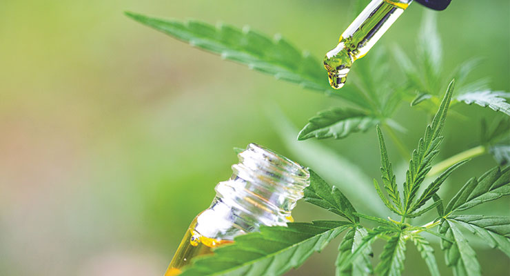 Is Cannabidiol Coming to Your City or Hamlet?