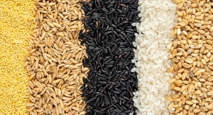 Review Concludes Refined Grains Have a Place in Healthy Eating Patterns