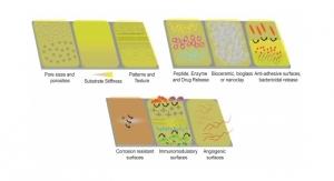 Polymer-Based Coatings on Metallic Implants Boost Osseointegration