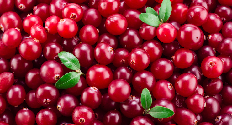 Fruit d'Or Launches Whole Fruit Cranberry Ingredients for Gummies