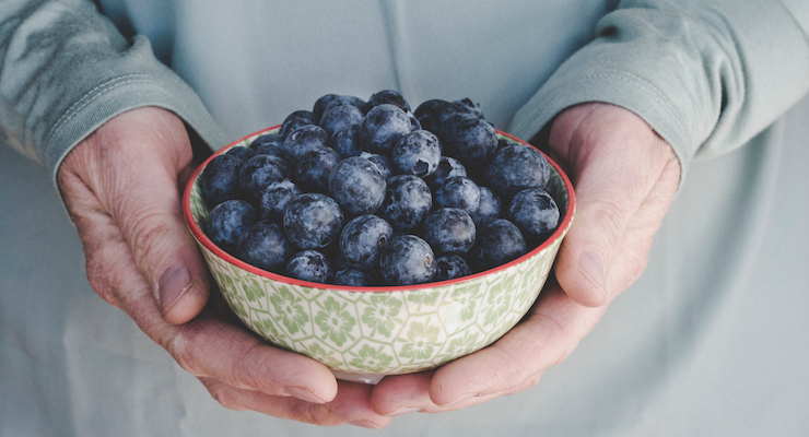 Blueberry and Soluble Fiber Supplementation Evidenced to Reduce Risk of Gestational Diabetes