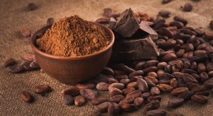 Cocoa Flavanols Evidenced to Improve Lower Limb Vascular Function In Older Adults