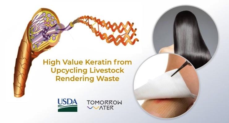 USDA SBIR Grant for Upcycling Keratin from Livestock Rendering Waste