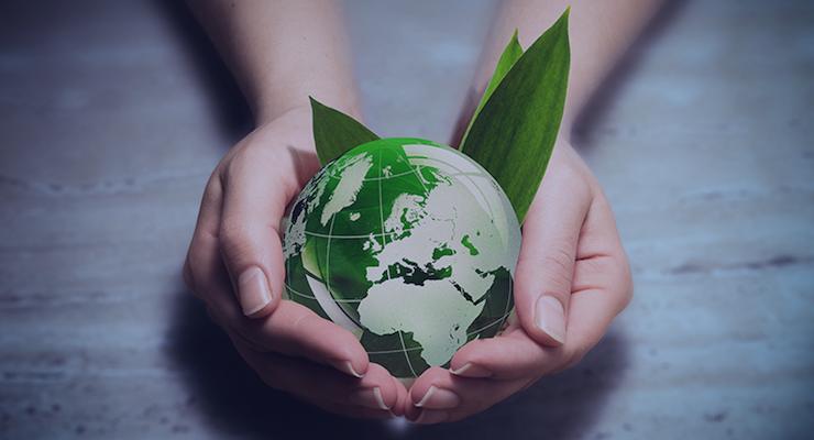 Innova Tracks Consumer Concern for Sustainability Across the Globe