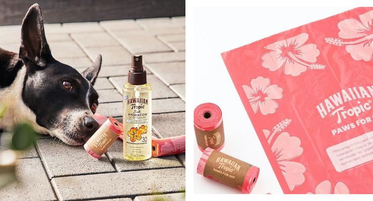 Hawaiian Tropic Doggy Bags Smell Like Summer