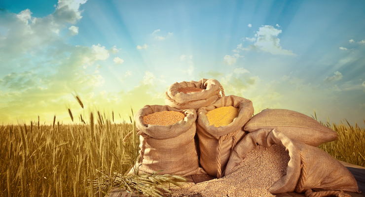 Soil Quality and Landscapes Affect Nutritional Content of Cereal Grains