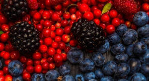 Trans-Resveratrol Hesperetin Combination Linked to 'Reversals' of Insulin Resistance