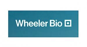 Alloy Therapeutics, Echo Investment Capital Create Wheeler Bio