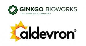 Aldevron, Ginkgo Bioworks Partner on mRNA Vax Mfg. Breakthrough