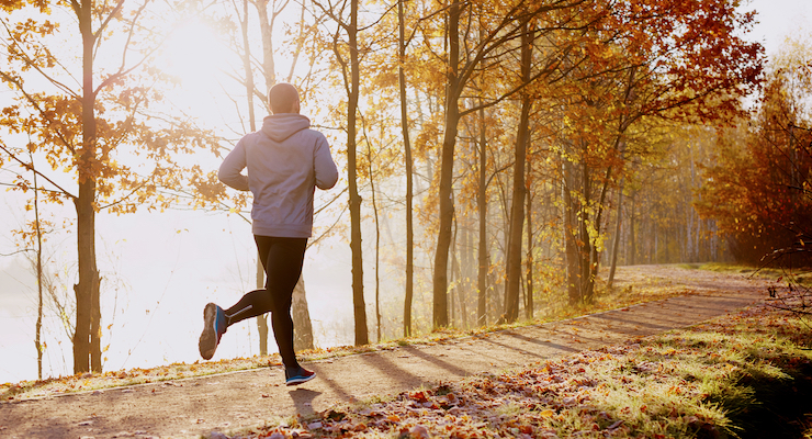 NMN Boosts Aerobic Capacity in Runners, Study Finds