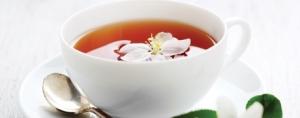 Antioxidant Directory 2012