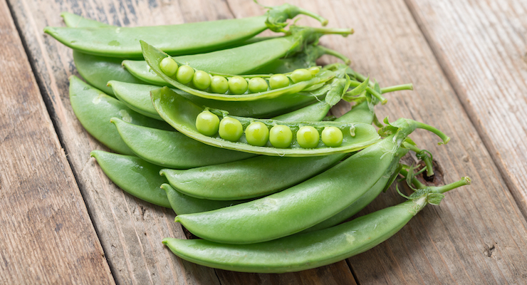 Grant Supports Research on Pea Protein Development