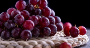 Grape Extract Achieves Self-Affirmed GRAS Status